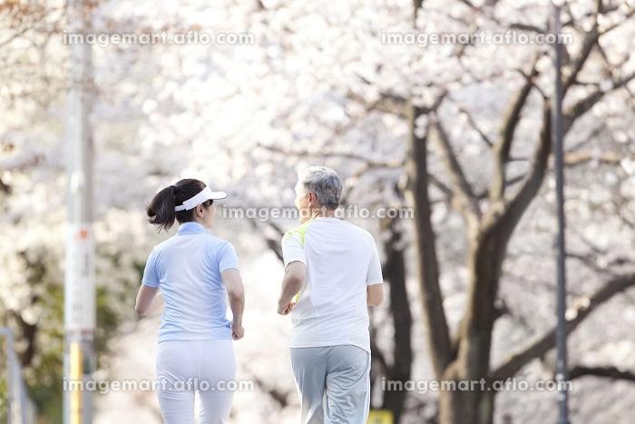 ジョギングするシニアカップルの販売画像
